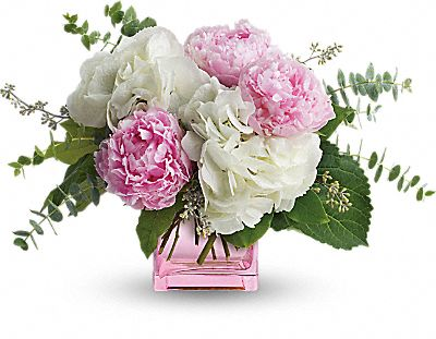 Shop for Peonies