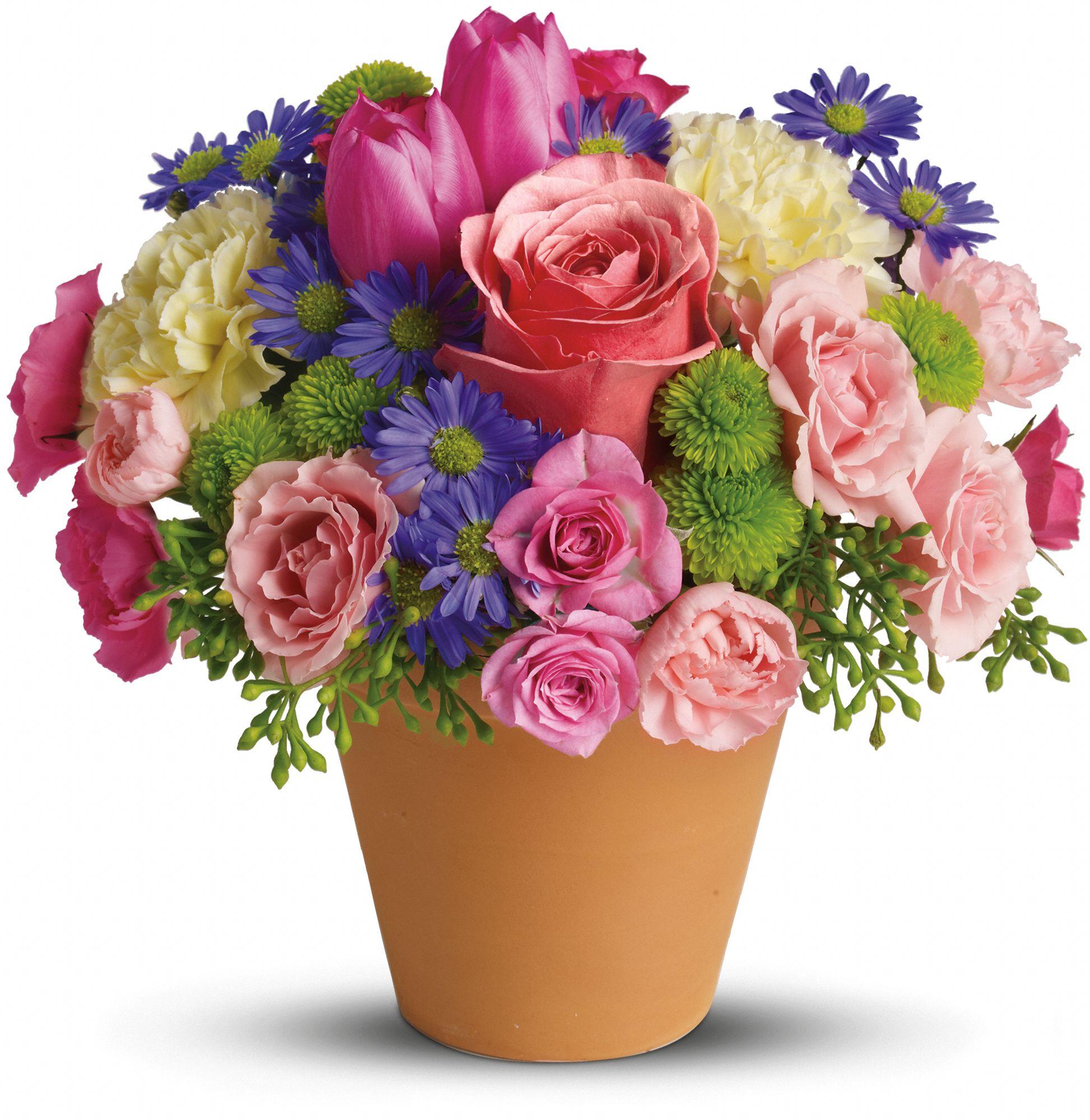 Spring Sonata Flowers