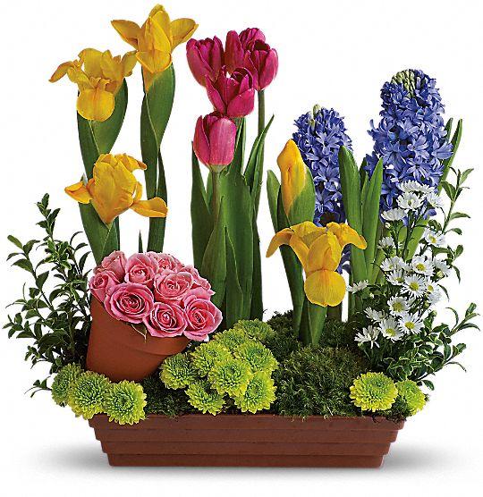 Spring Favorites Flowers
