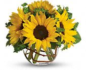 Sunny Sunflowers, picture