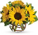 Sunflowers Flower Bouquets
