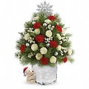 Send a Hug Cuddly Christmas Tree by Teleflora Flowers