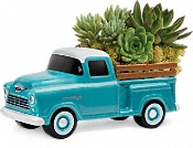Perfect Chevy Pickup  Plants
