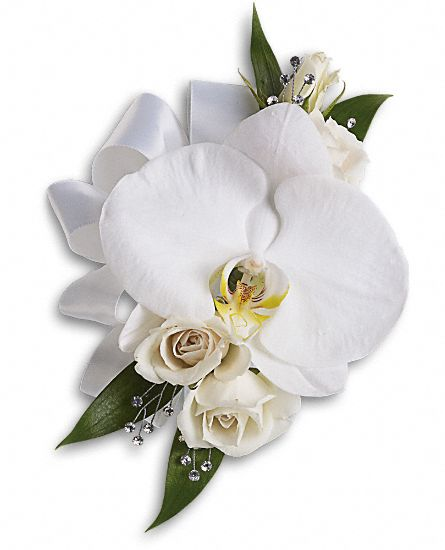 White Rose And Orchid Corsage White Orchid And Rose Corsage