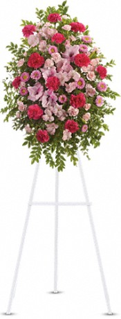 Pink Tribute Spray Flowers