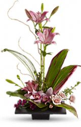 Shop for Bestselling Bouquets & Plants