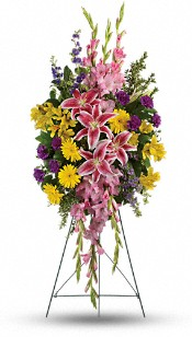 Rainbow Of Remembrance Spray Flowers
