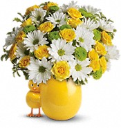 My Little Chickadee by Teleflora - Premium