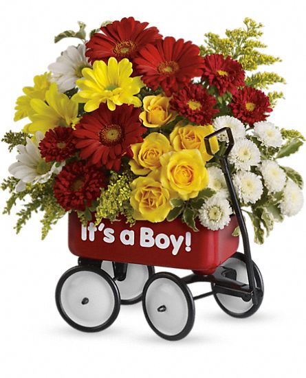 Baby's Wow Wagon by Teleflora - Boy Flowers