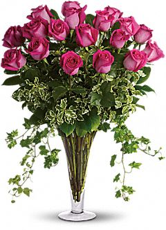 Dreaming in Pink - 18 Long Stemmed Pink Roses Flowers
