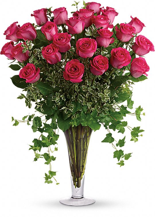 Dreaming in Pink - Long Stemmed Pink Roses Flowers