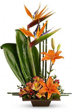Fleurs Grâce exotique