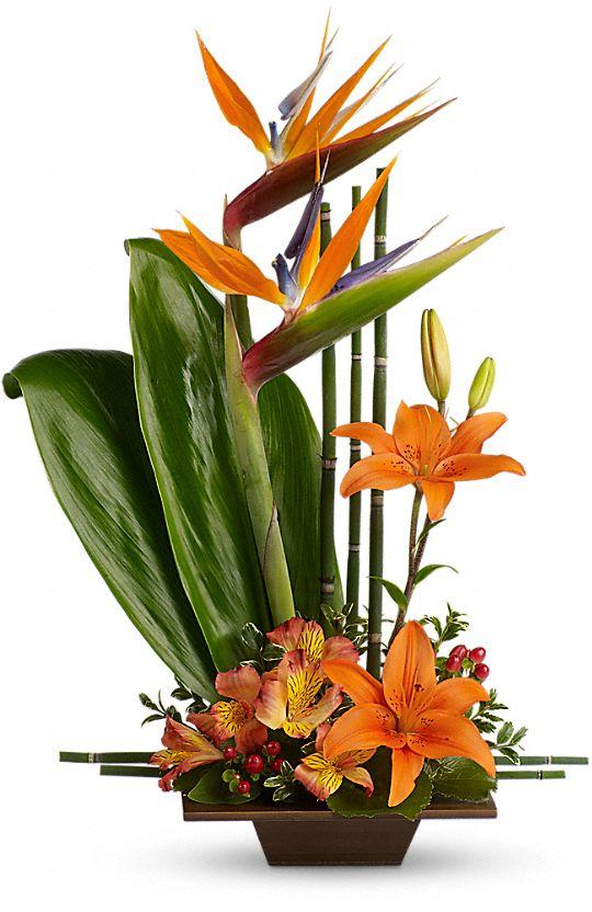 Teleflora's Exotic Grace Flowers