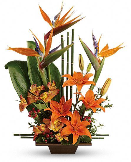 Teleflora 39 s exotic grace flowers teleflora 39 s exotic grace for Bouquet exotique