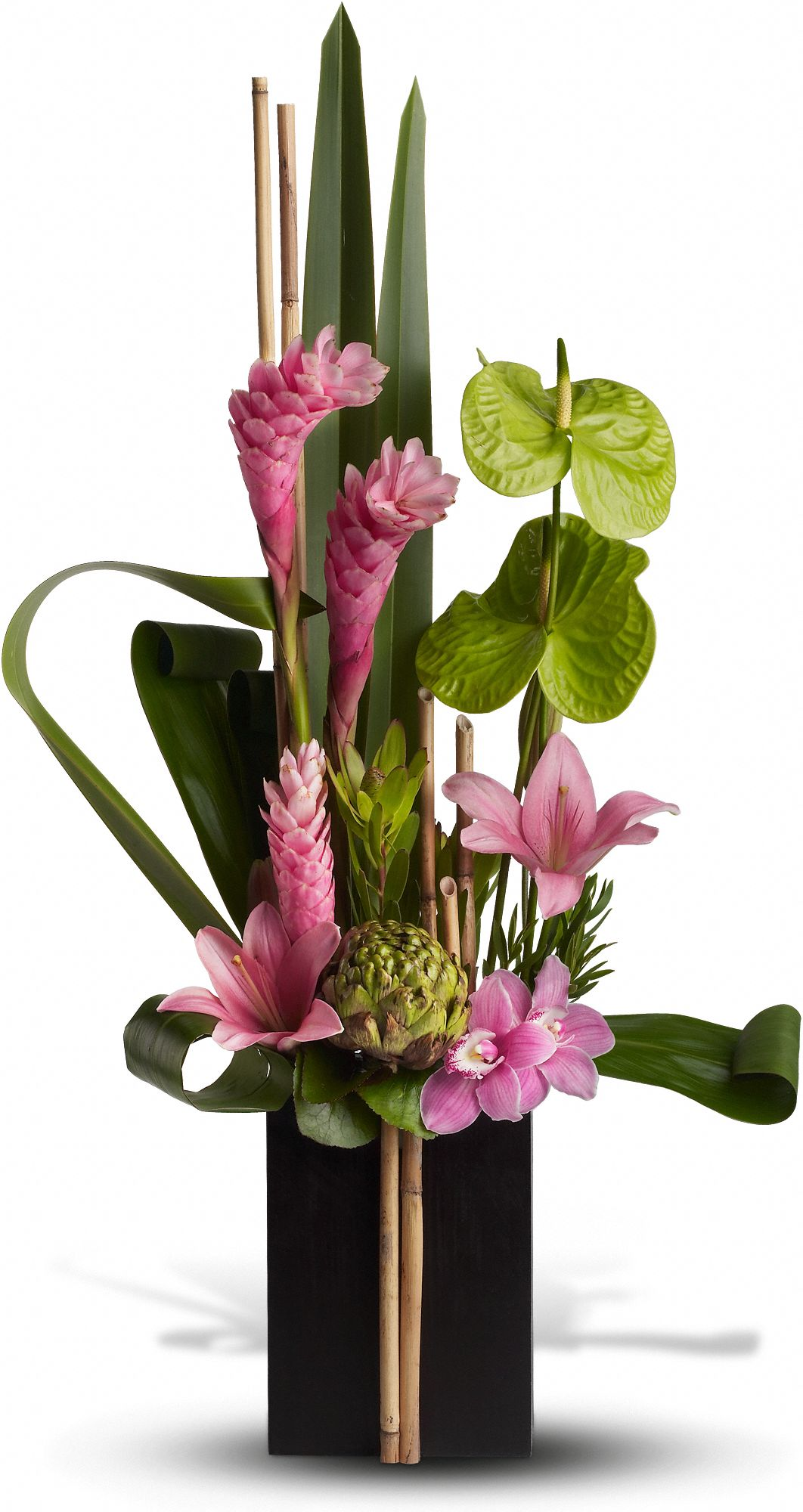 anthurium meaning  symbolism  teleflora, Natural flower