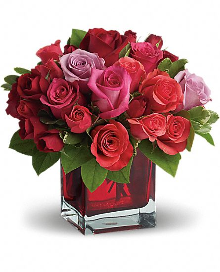 find romantic flowers for your true love, Natural flower