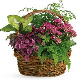 Secret Garden Flower Basket