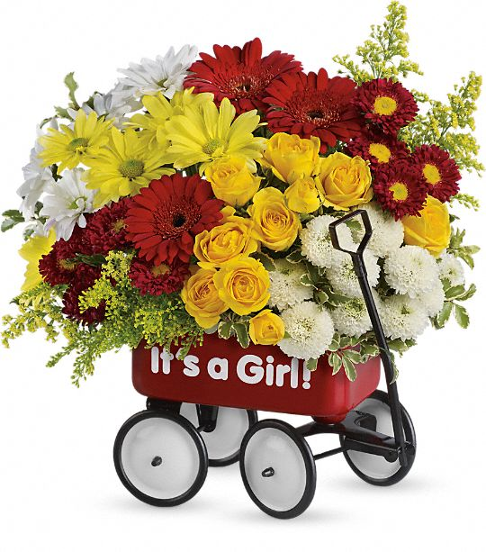 Baby's Wow Wagon by Teleflora - Girl Flowers