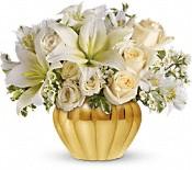 Fleurs Parcelle d'or