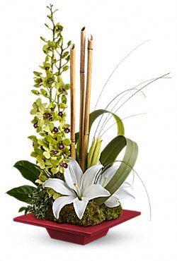 Secret Oasis Flowers