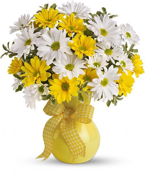 Teleflora's Upsy Daisy Flowers