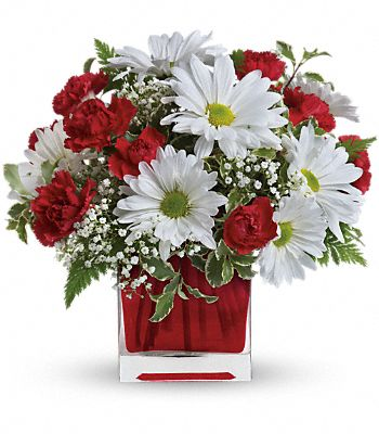 Red And White Delight by Teleflora Flowers