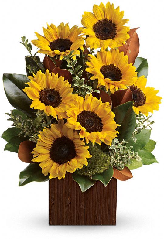 You're Golden Bouquet by Teleflora Flowers