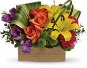 Teleflora's Shades Of Brilliance Bouquet Flowers