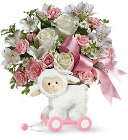 Sweet Little Lamb - Baby Pink Flowers