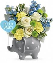 Hello Sweet Baby - Blue Flowers