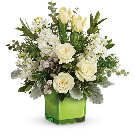 Teleflora's Winter Pop Bouquet Flowers