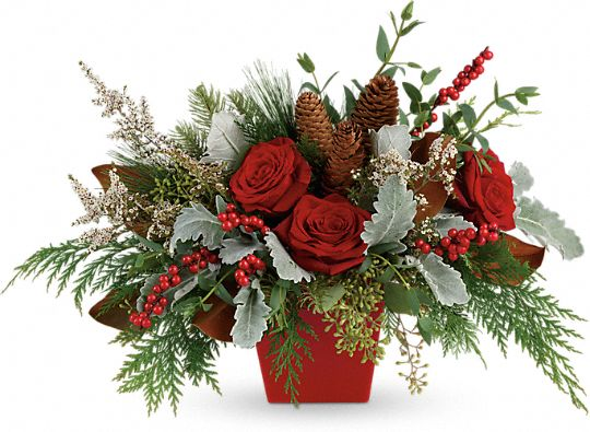 Winter Blooms Centerpiece Flowers