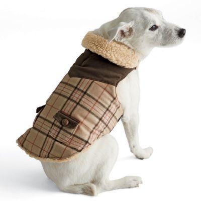 Plaid Dog Coat