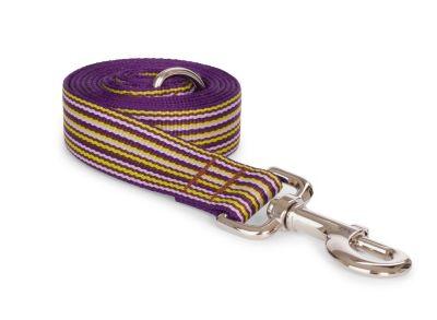 Fab Dog™ Thin Multi Stripe Lead