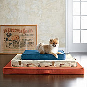 Company Dog Bed Cover - Medium