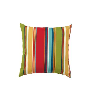 Outdoor Throw Pillow (16x16x5