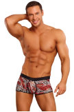 Male Power® Leopard Lace Trunk