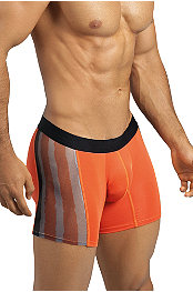 Zylas® Zest Boxer Brief
