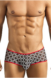 Pikante® Puzzle Anatomic Brief