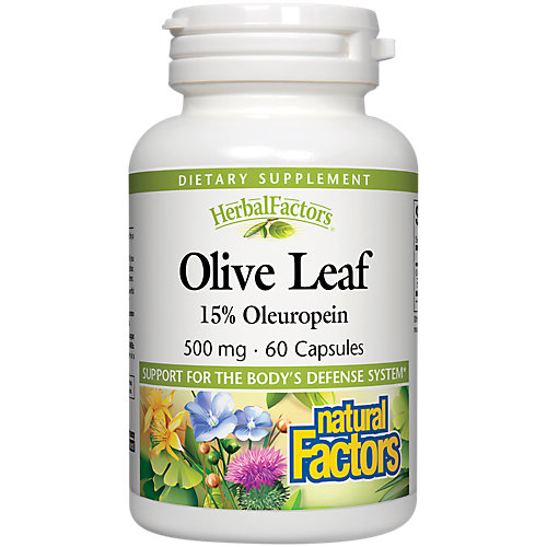Olive Leaf Extract 500mg 10 O