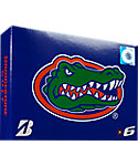 Bridgestone e6 NCAA Florida Gators Golf Balls - 12 Pack