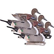 Hard Core Pintail Duck Decoy – 6 Pack