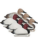 Hard Core Canvasback Duck Decoy - 6 Pack