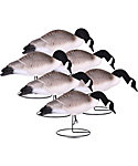 Hard Core Full Body Canada Goose Feeder Decoys - 6 Pack