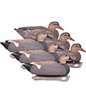 Hard Core Gadwall Duck Decoys - 6 Pack