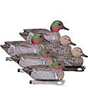 Hard Core Green Wing Teal Duck Decoy - 6 Pack