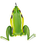 Lunkerhunt Pocket Frog Soft Bait