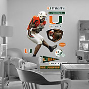 Fathead Andre Johnson Miami Wall Graphic