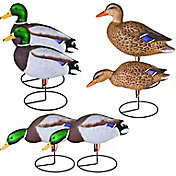 Flambeau Storm Front Full Body Mallard Duck Decoy – 6 Pack