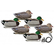 Hard Core Pre-Rigged Magnum Mallard Floating Decoys – 6 Pack